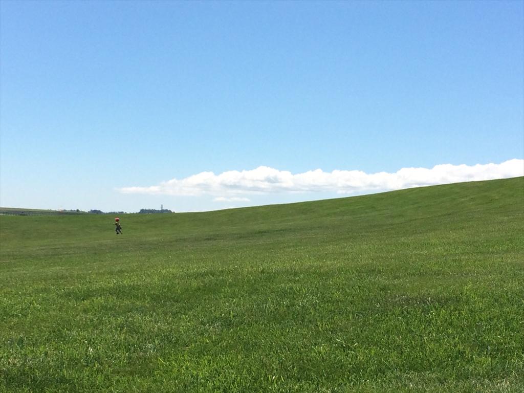 絶景 まさにデスクトップの壁紙 Windowsxp草原 北海道旭川空港