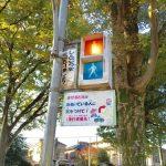 公園の中にサーキットが!子供興奮!板橋交通公園。バスと電車にも乗れる!